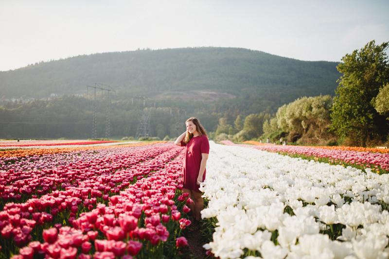 Tulip Festival-33