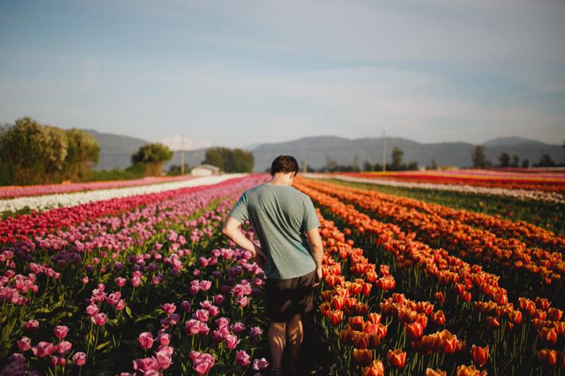 Tulip Festival-37