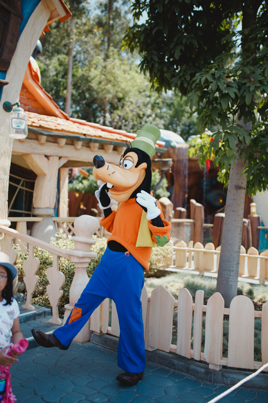 Disneyland-39