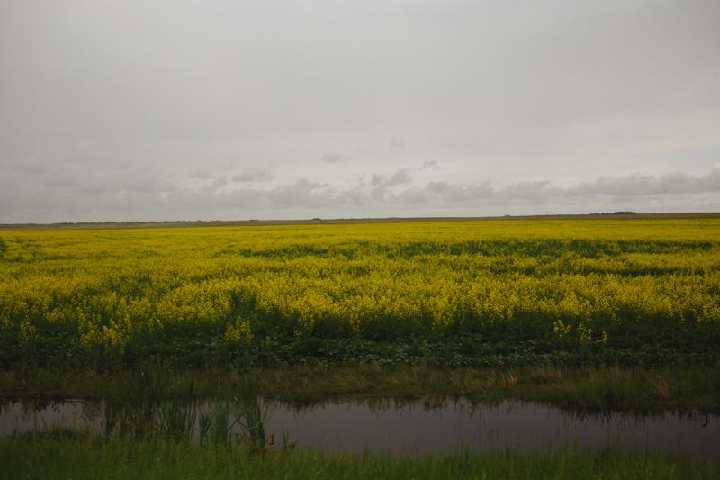 Nanton&Edmonton-107