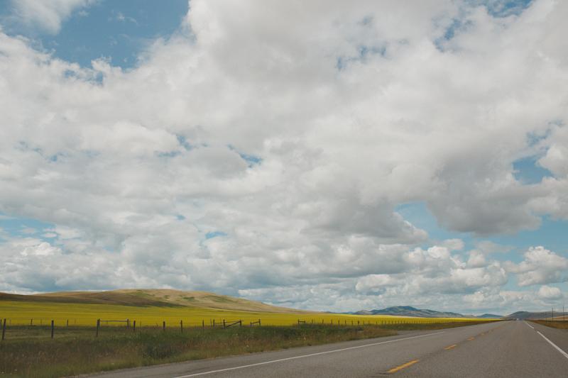 Nanton&Edmonton-36